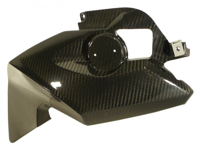 Carbon frame cover right